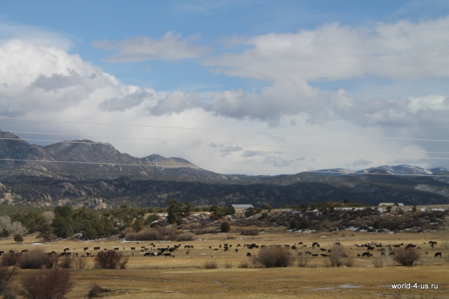 rancho2