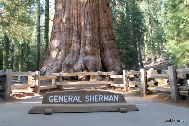 General Sherman Down