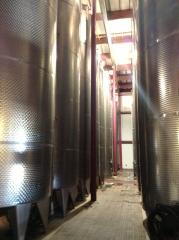 vinery02