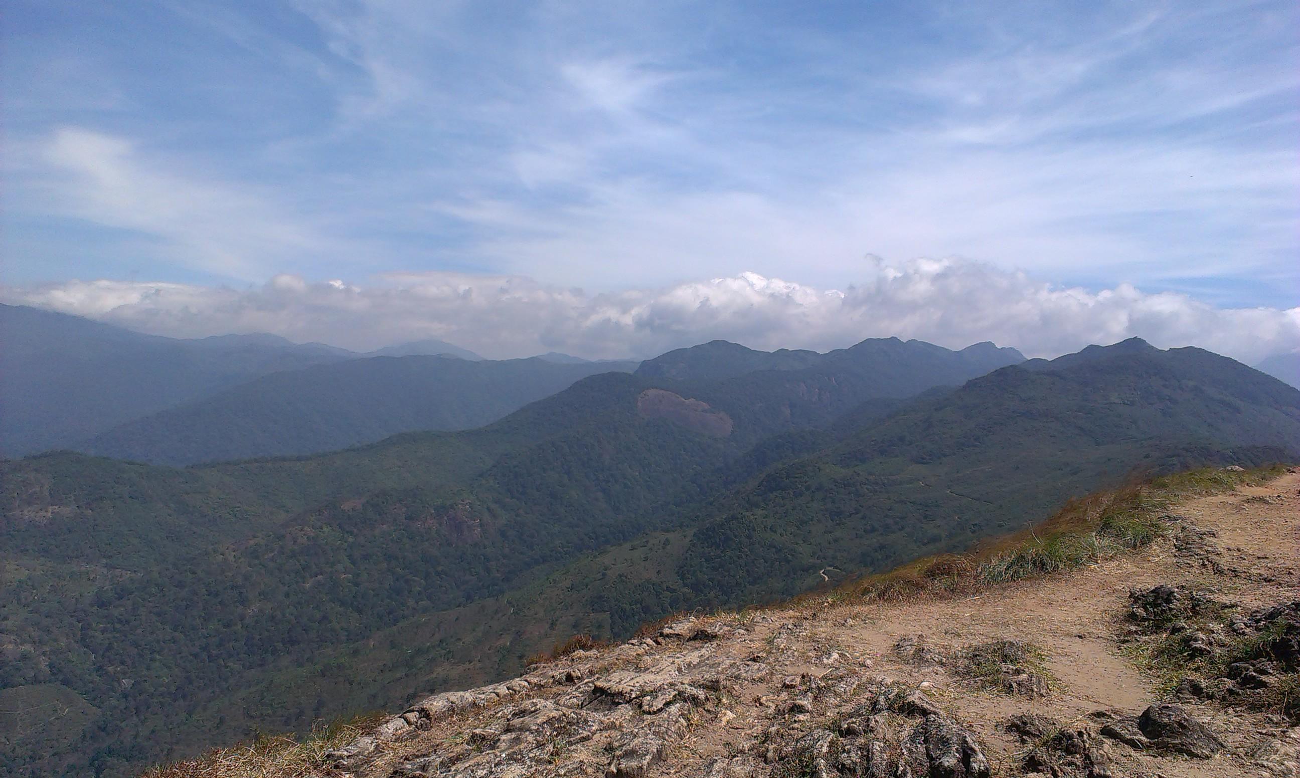 Красоты Кералы: горы чая в Понмуди